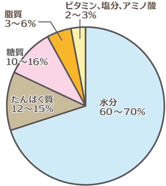 ローヤルゼリーに含まれる成分円グラフ
